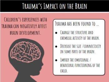 Trauma's Impact on the Brain